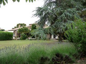 Maison Morieres-les-avignon, 7 pièce(s)